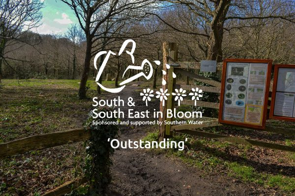 Play Lane Millennium Green Celebrates with South and South East in Bloom Award
